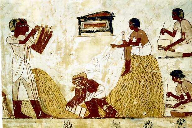 Scène Murale De La Tombe De Menna, c.1422 - c.1411 BC - Ancient Egypt