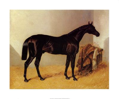 Charles XII the Race Horse - John Frederick Herring Sr.