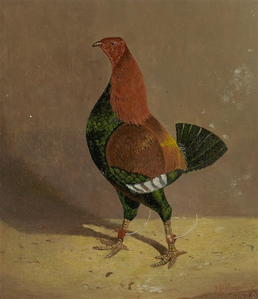 A Dark-breasted Fighting Cock, Facing Left, 1829 - John Frederick Herring senior