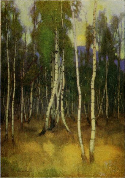 BIRCHES AT LUCSIVNA-FURDO, 1909 - Marianne Stokes
