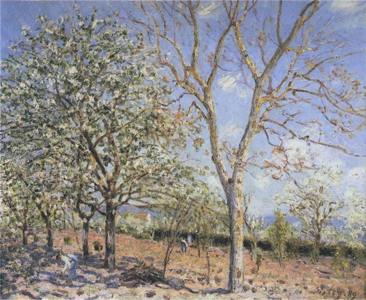 Trees in Bloom, 1889 - Alfred Sisley