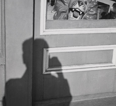 Lion and Shadow, 1949 - Andre Kertesz