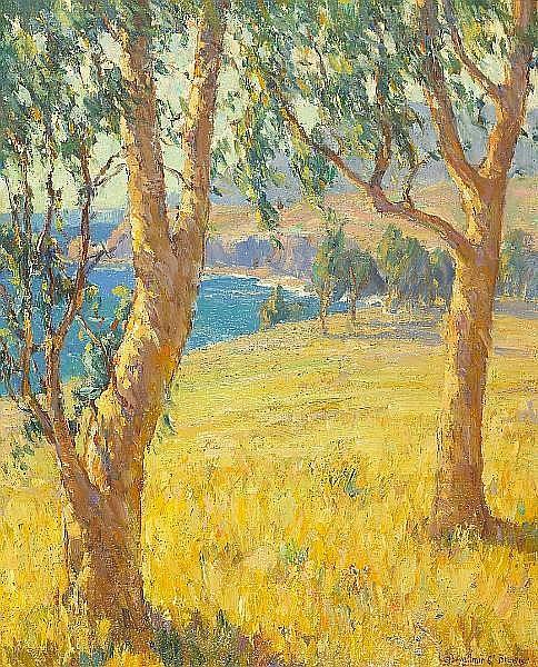 Eucalypti near Arch Beach, California - Бенджамін Браун