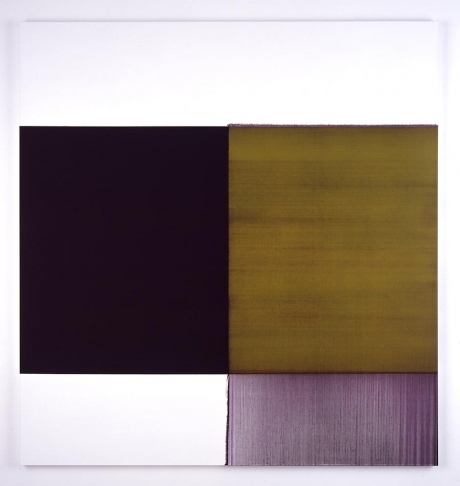 Exposed Cinnabar Painting, 2006 - Callum Innes