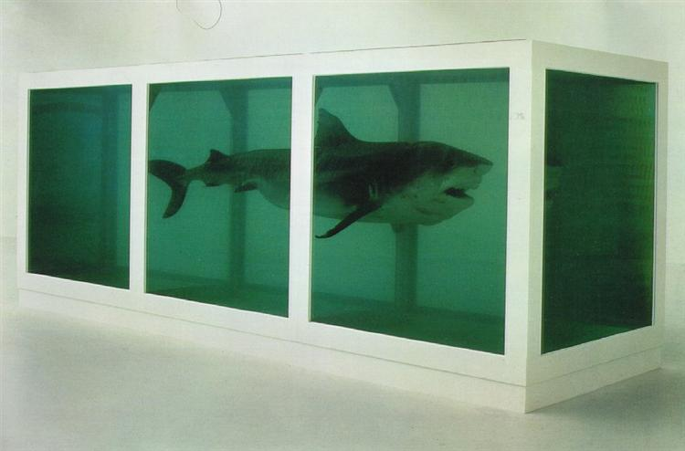 The Physical Impossibility of Death in the Mind of Someone Living, 1991 - Damien Hirst