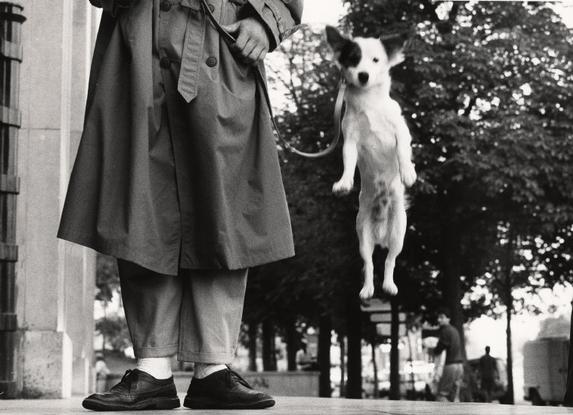 Paris, 1989 - Elliott Erwitt
