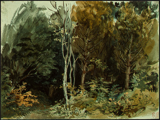 The Edge of a Wood at Nohant, 1842 - 1843 - Eugene Delacroix