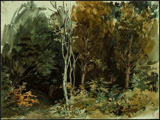 The Edge of a Wood at Nohant, 1842 - 1843 - Eugène Delacroix