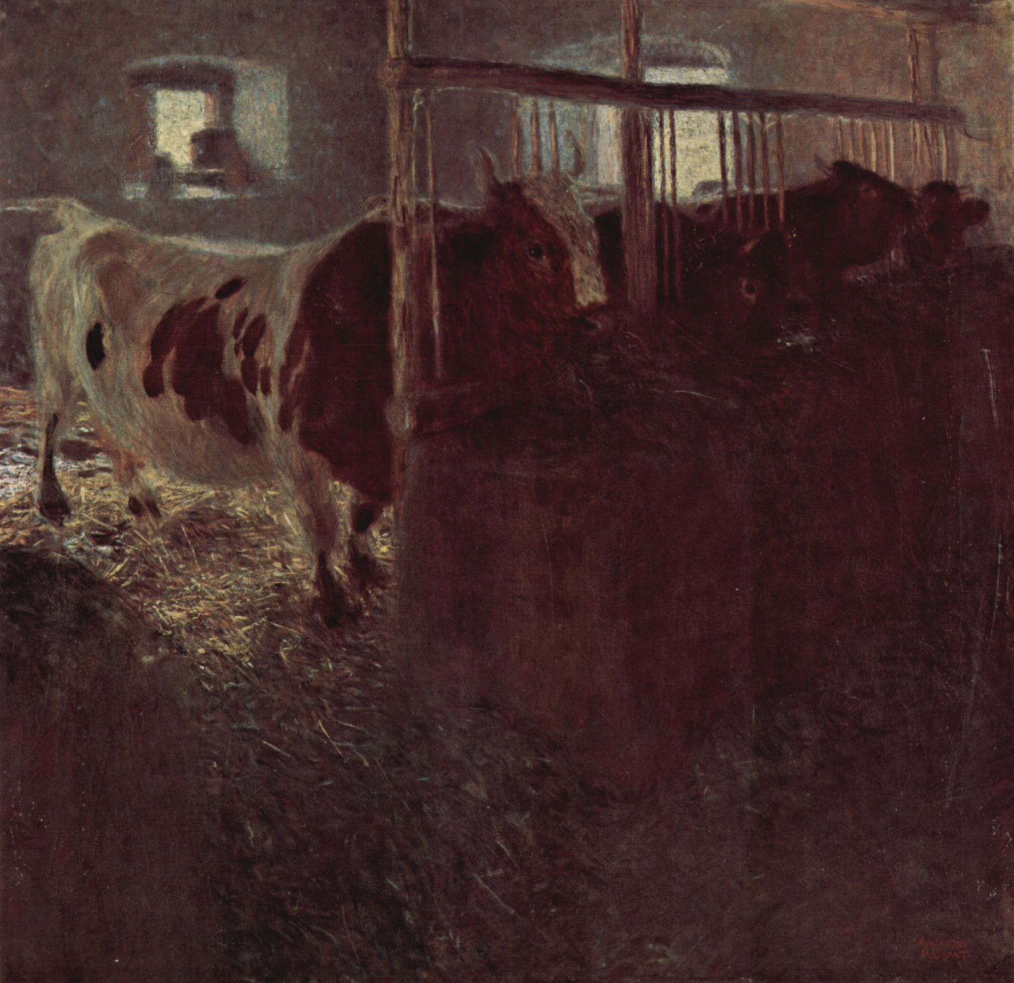 Cows in the barn, 1900-1901