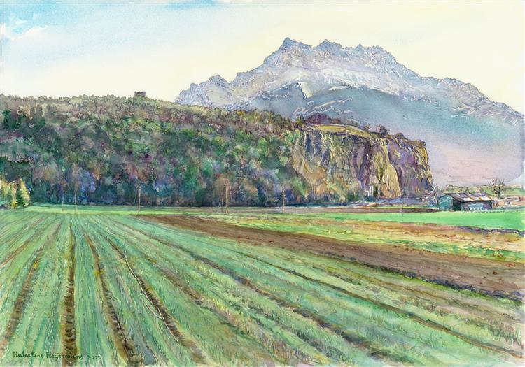 Swiss landscape of the plain around the rock of Saint-Triphon - Hubertine Heijermans