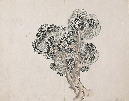 Untitled (a tree without leaves) - Ike no Taiga