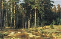 Mast Tree Grove - Ivan Shishkin