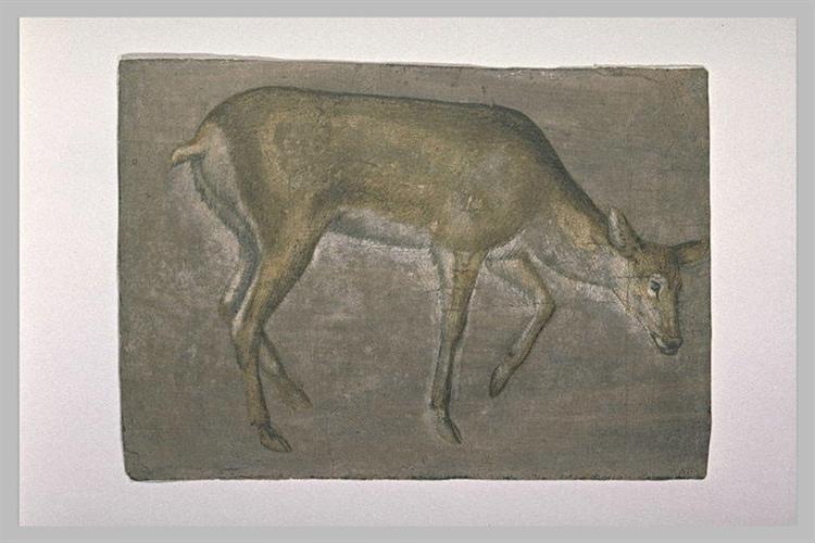 Sketch of deer doe - Jacopo Bellini