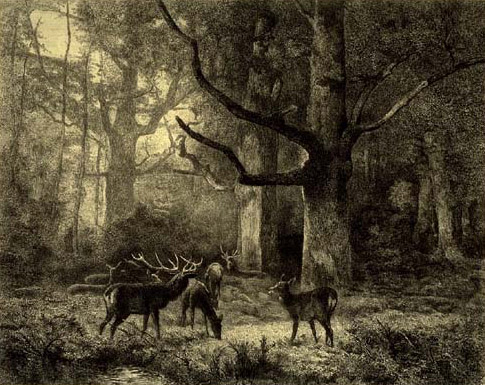 Forest of Fontainbleau, c.1850 - Karl Bodmer