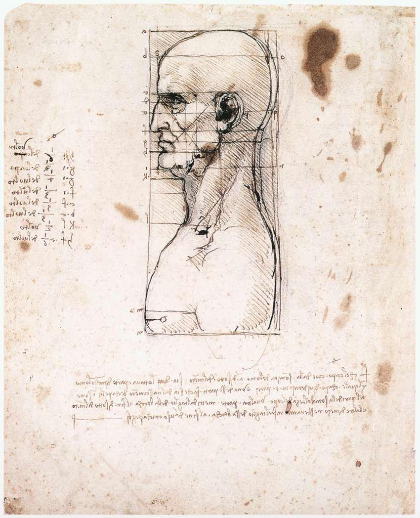Bust of a man in profile with measurements and notes, 1490