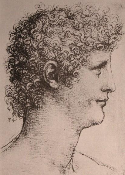 Drawing of Salai, 1500