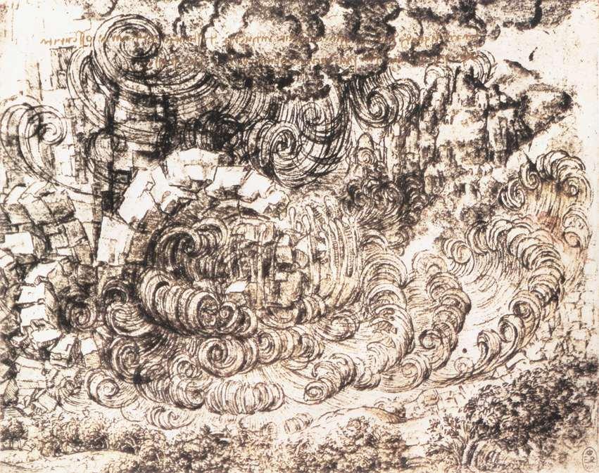 nature and function of leonardo da Leonardo da vinci critical essays  call into question the nature of leonardo's philosophical  the notebooks of leonardo da vinci leonardo da vinci.