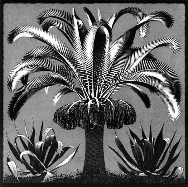 Palm, 1933 - M.C. Escher