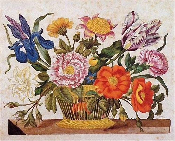 from Der Raupen wunderbare Verwandlung und sonderbare Blumennahrung, Plate CLXIX, 1680 - Maria Sibylla Merian