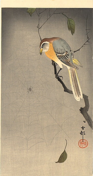 http://uploads4.wikipaintings.org/images/ohara-koson/the-spiderweb.jpg