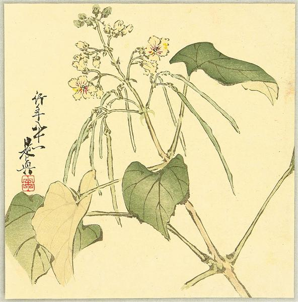 Summer Flower, 1888 - Shibata Zeshin