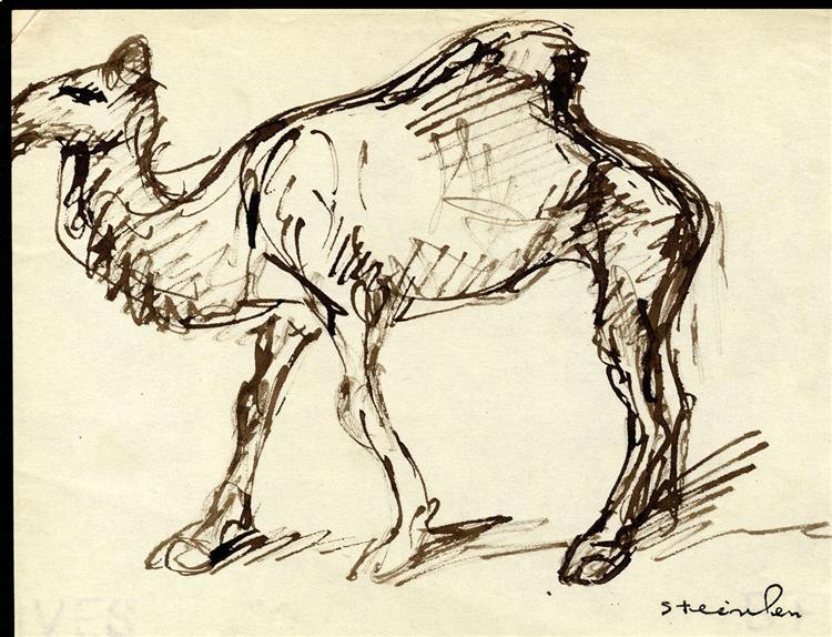 Camel - Theophile Steinlen