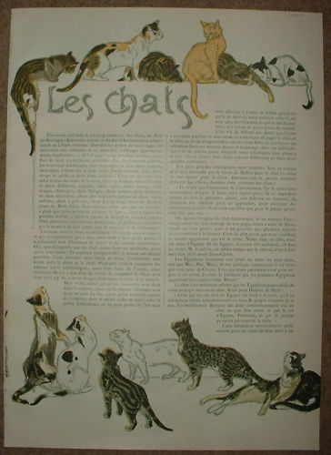 Cats - Theophile Steinlen
