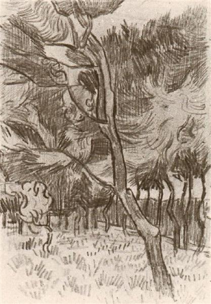 Pine Trees In The Garden Of The Asylum 1889 Vincent Van