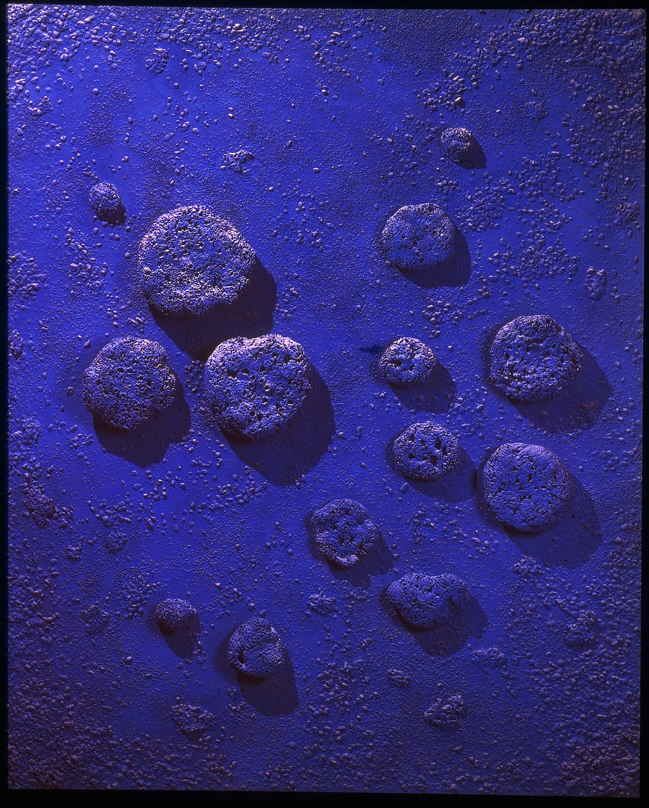 Blue agreement yves klein encyclopedia for Artist mural contract