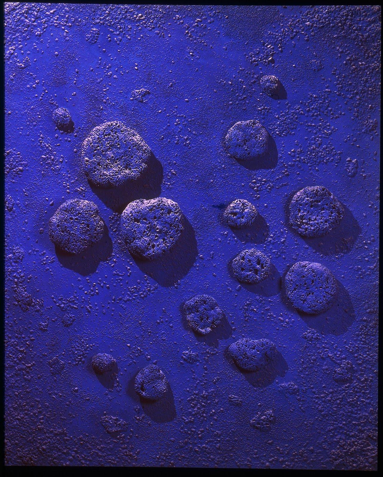 monochrome yves klein